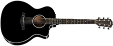 Public Taylor 214ce Deluxe Grand - black, Sapel back and sides