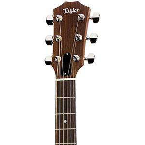 Taylor 214ce Acoustic Guitar 200 Series, Rosewood, Grand Auditorium, Kutaway, ES-T